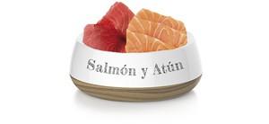 Salmón y Atún